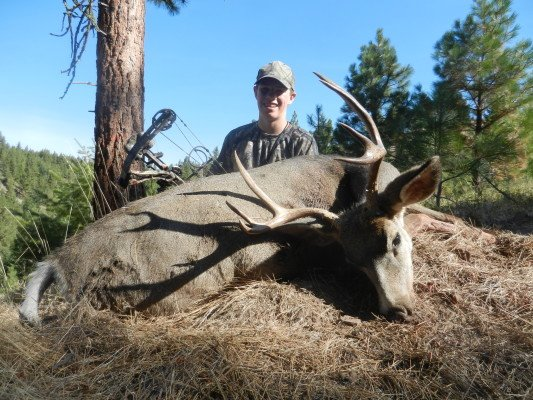 Maverick W 3x4 Archery Mule Deer take in 2012 with Sarvis Prairie Outfitters